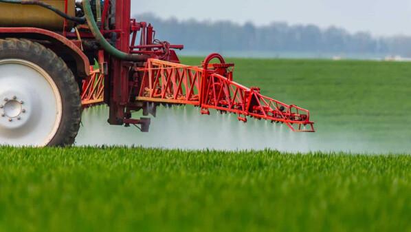 Ґрунтові гербіциди на сторожі врожаю