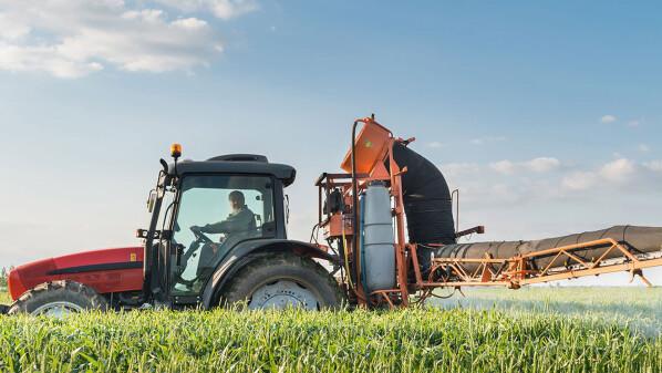 Посів ранніх ярих зернових в Україні
