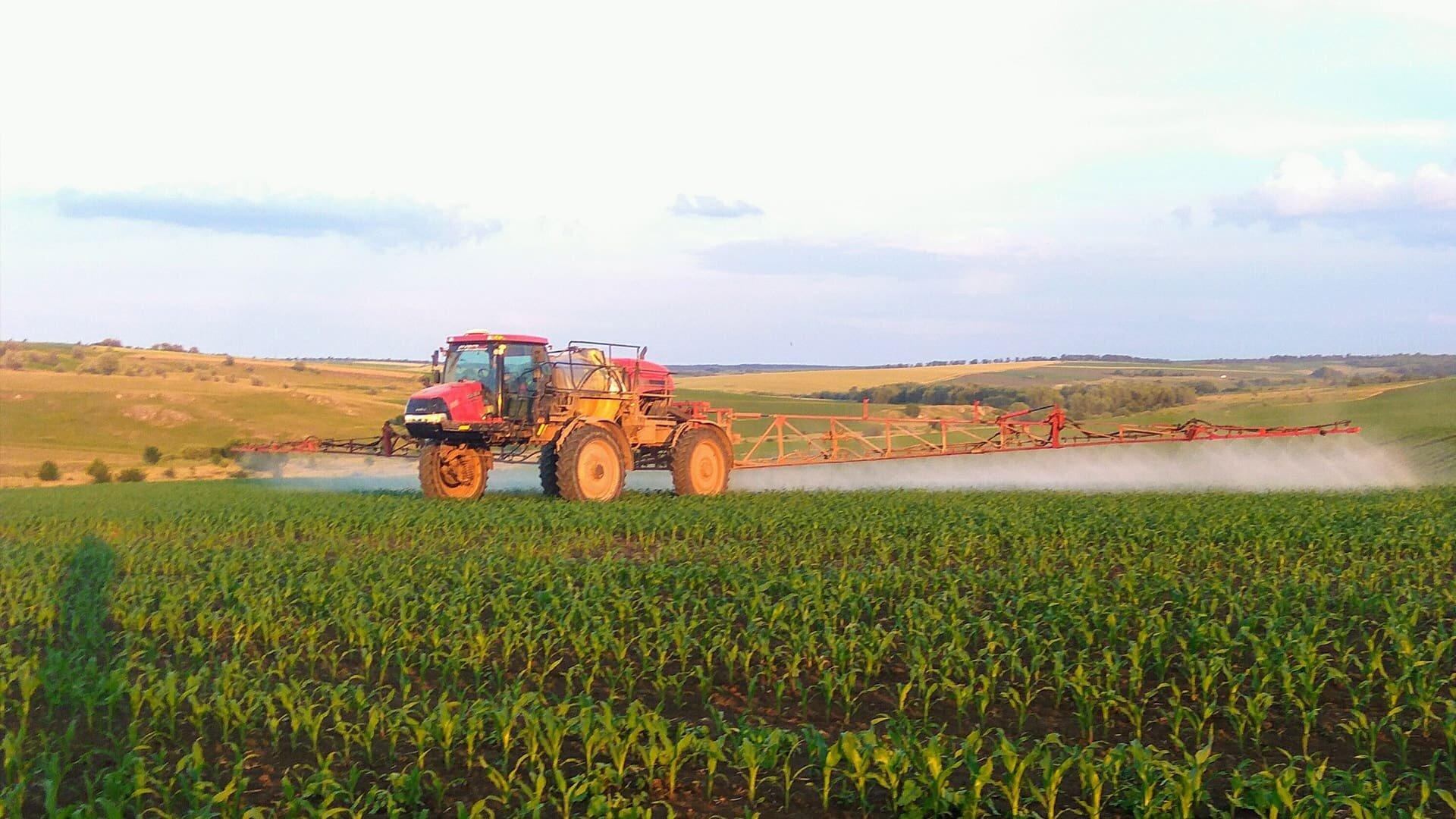 Економічно-обґрунтована та ефективна суміш препаратів Ріттер БТ та Баал БТ для захисту кукурудзи